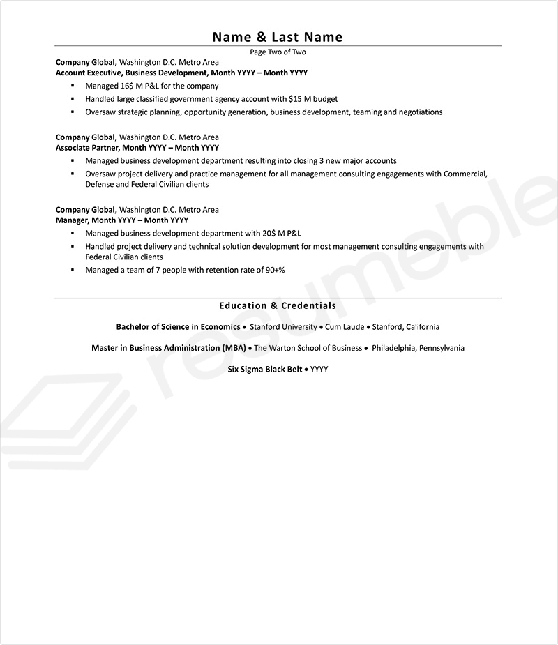 Sample Resumes for Ceo Executive